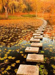 steps on water