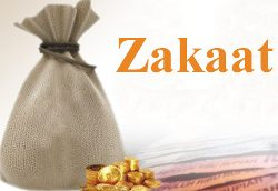 Zakaat – A Perpetual Investment