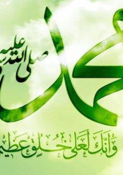 Loving Every Aspect of the Mubaarak Life of Rasulullah (sallallahu 'alaihi wasallam)